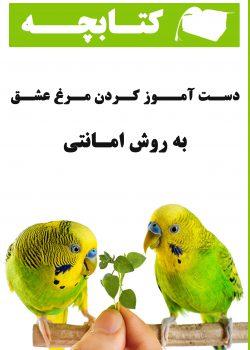 کتاب دستی کردن مرغ عشق به روش امانتی