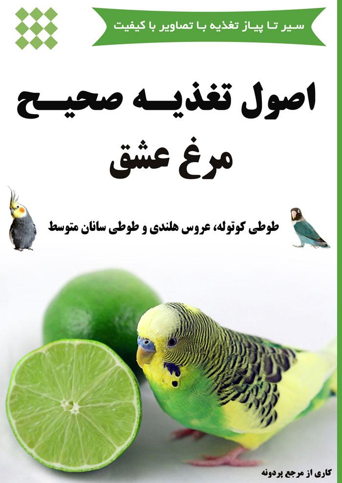 کتاب اصول تغذیه صحیح مرغ عشق، طوطی کوتوله، عروس هلندی