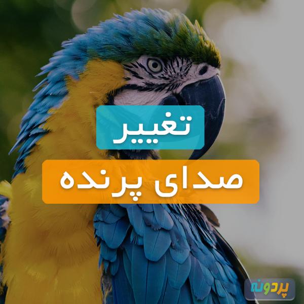 تغییر صدای پرندگان