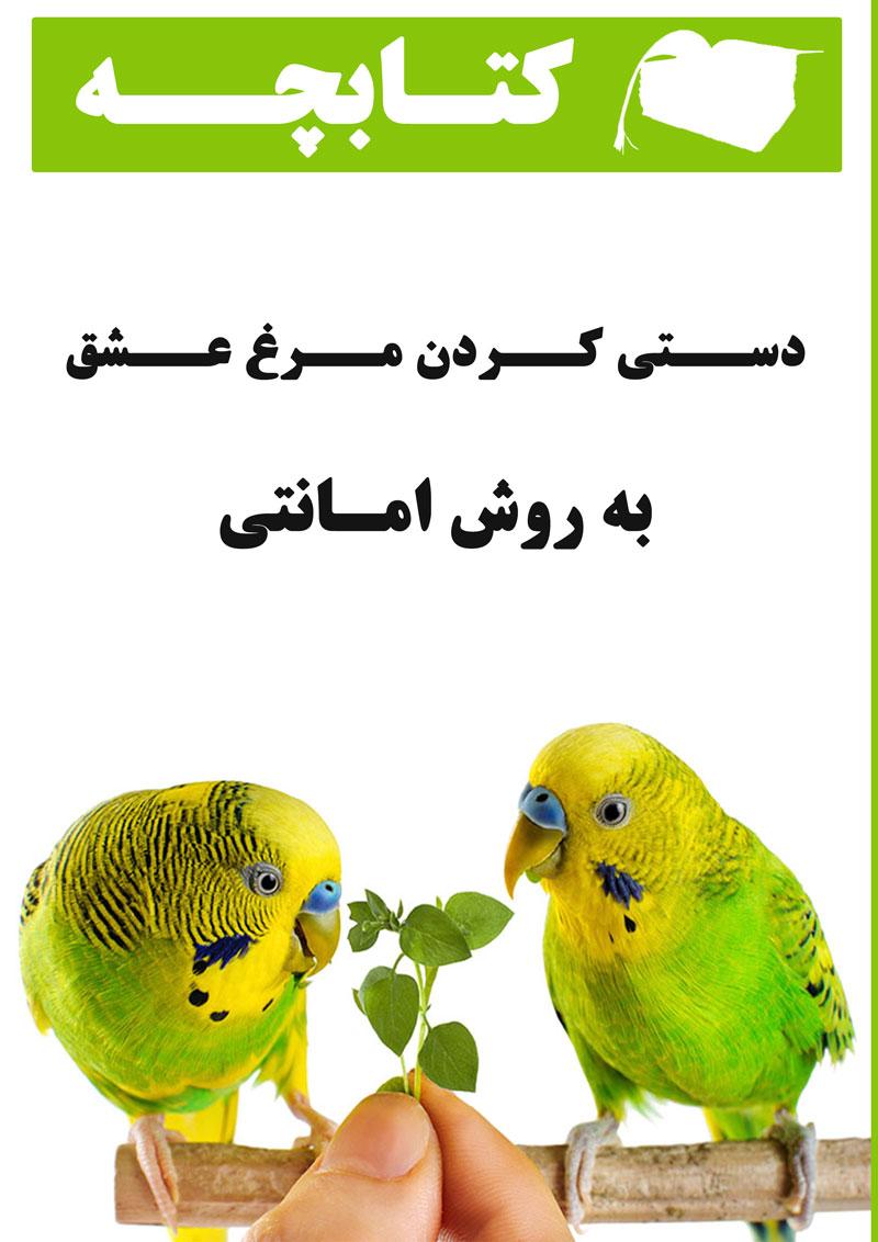 کتابچه دستی کردن مرغ عشق به روش امانتی + خرید و دانلود